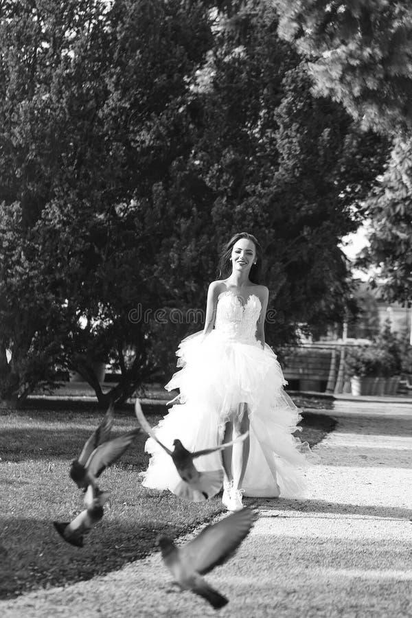 Serviços do casamento mulher 'sexy' do casamento que corre com pomba imagens de stock royalty free