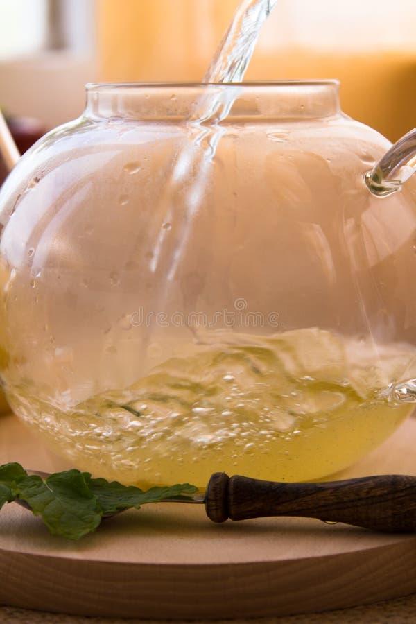 Service à thé d'infusion de Camomille-estragon image libre de droits