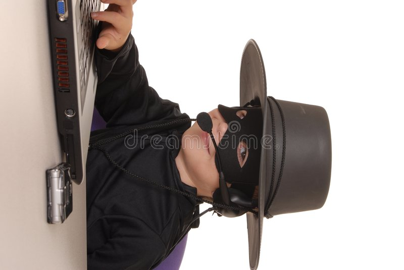 Service SVP de Zorro 30 images stock