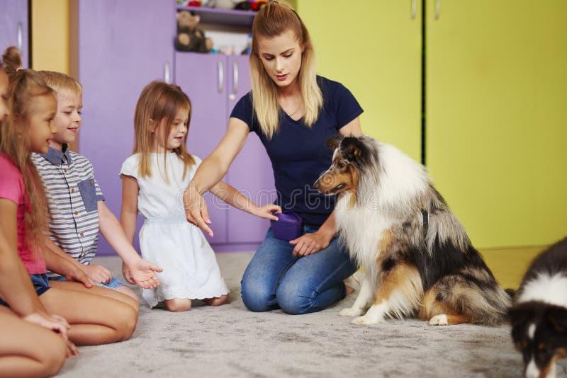 Servicehundarbete med lyckliga barn arkivfoto