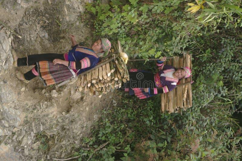 Servidumbre de la madera fotos de archivo