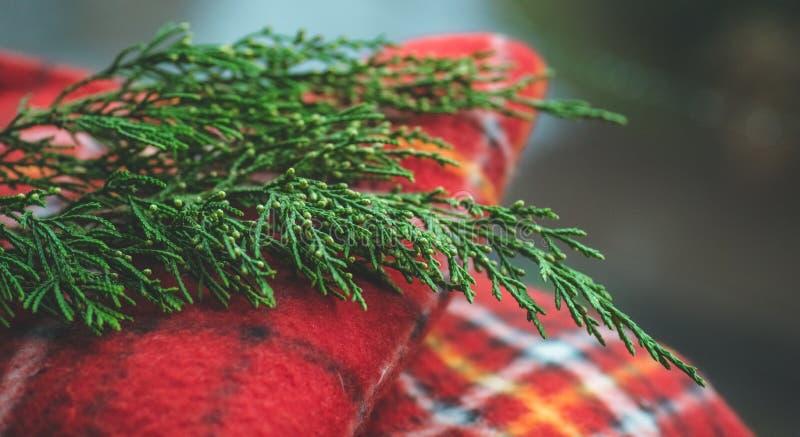 Serviette sur le fond en bois avec les branches impeccables Concept de chute Effet de vintage Préparation à Noël images libres de droits