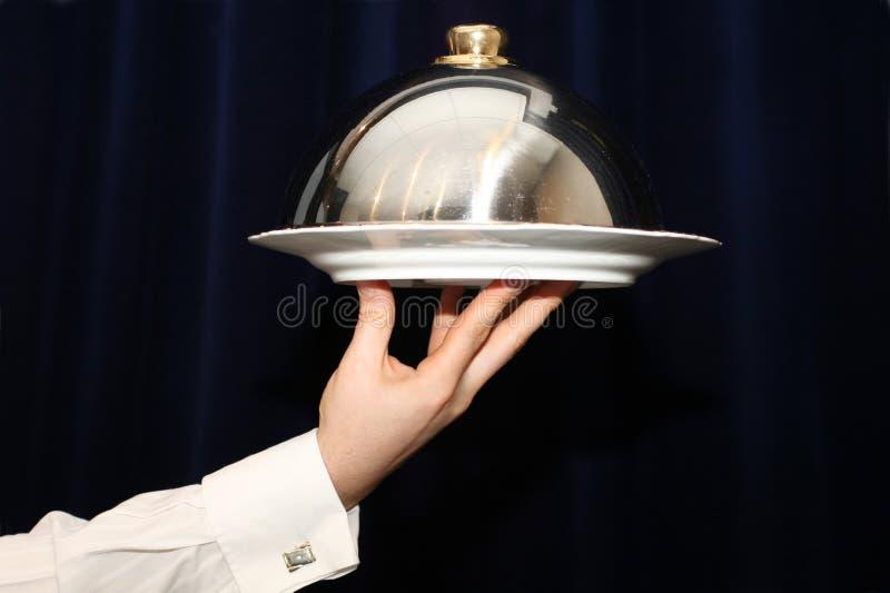 serving royaltyfria foton
