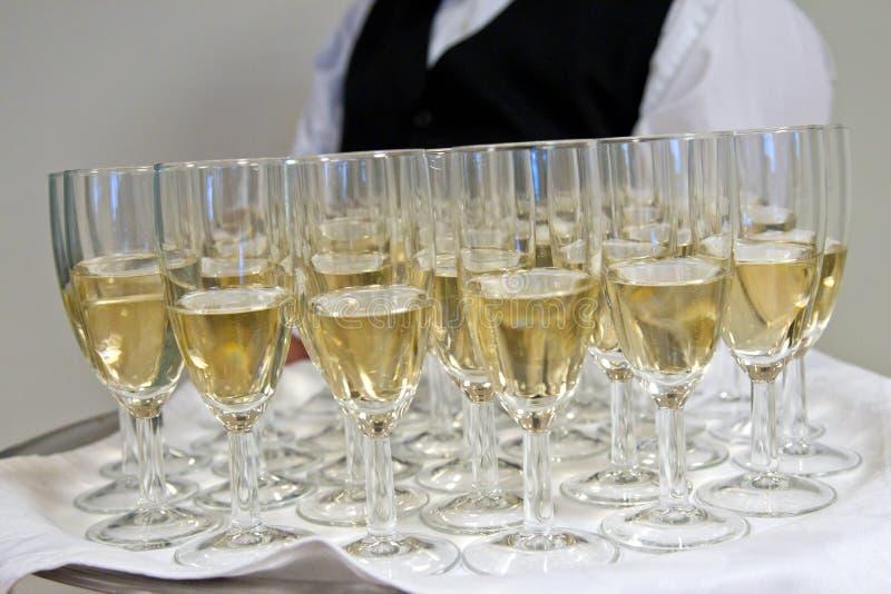 Download Serving champagne stock image. Image of enjoy, liquid - 28231945