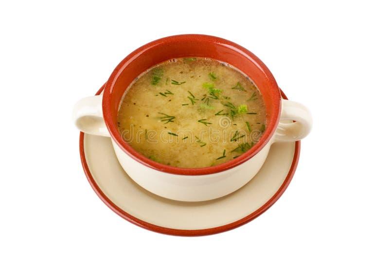 Download Serving Of Lentil Chicken Soup Stock Photo - Image: 9337350