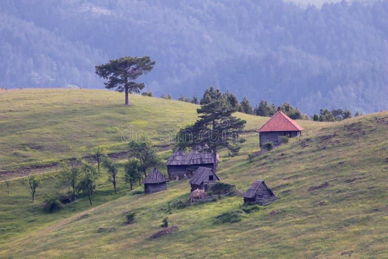 Servisch traditioneel dorp met houten huis royalty-vrije stock afbeelding