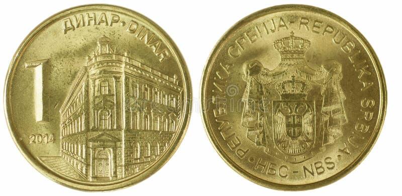 Servische dinar royalty-vrije stock foto's