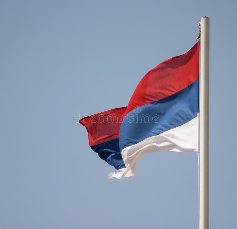 Download Servische vlag stock foto. Afbeelding bestaande uit milosevic - 37612