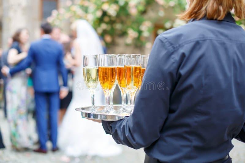 Servitris med maträtten av champagne- och vinexponeringsglas arkivbilder