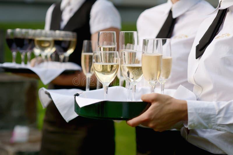 Servitris med maträtten av champagneexponeringsglas royaltyfri fotografi