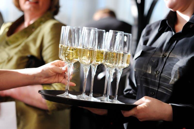 Servitris som rymmer en maträtt av champagne- och vinexponeringsglas royaltyfri fotografi