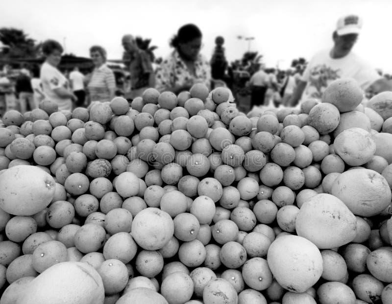 Servizio dei coltivatori immagine stock