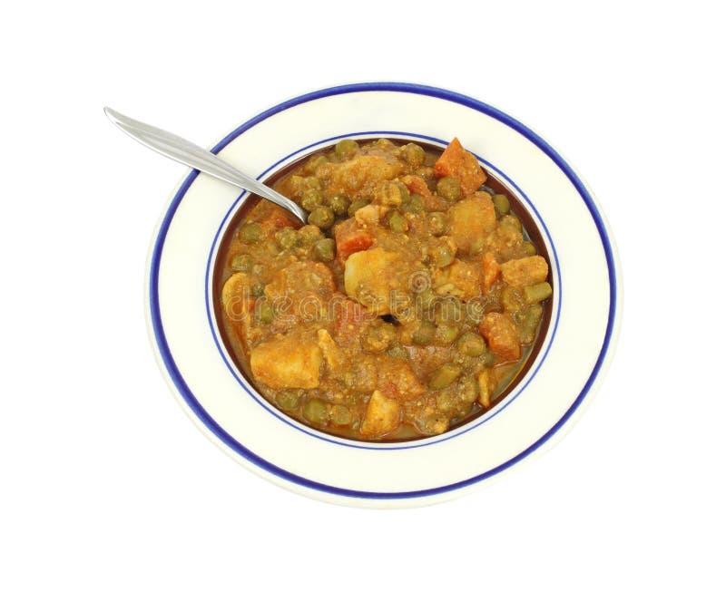 Servizio della verdura mixed in salsa di curry fotografia stock libera da diritti
