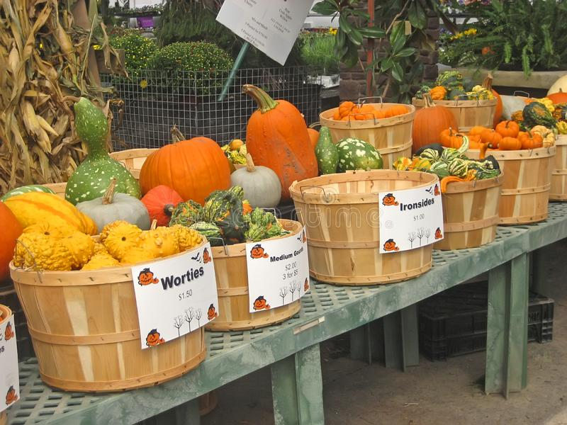 Autumn Market immagini stock libere da diritti