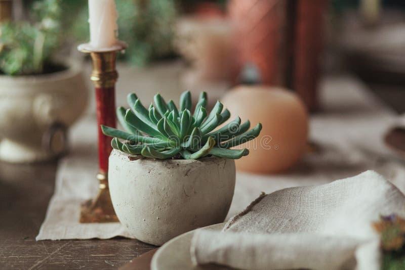 Servizio di legno rustico della tavola con i succulenti in vaso concreto, candele, napki della tela di sacco Fiore sul fuoco immagine stock