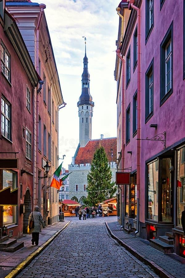 Servizio di natale a Tallinn immagine stock libera da diritti