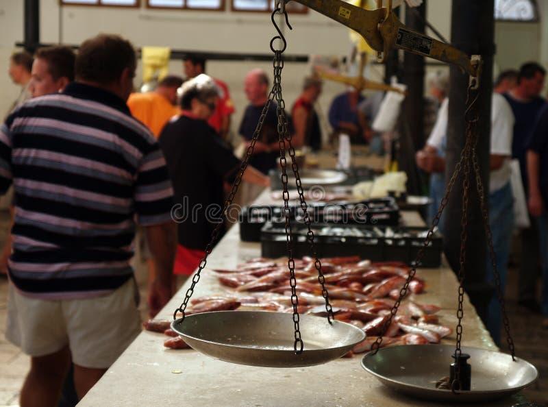 Servizio di pesci immagine stock libera da diritti