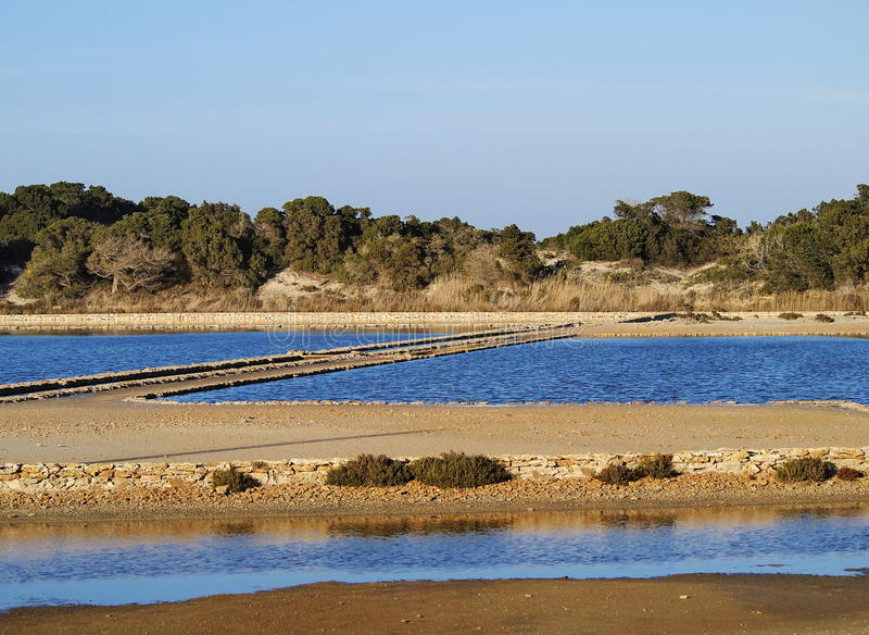 Ses Salines, Formentera royalty free stock image