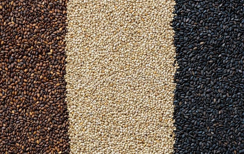Sesam-Startwert für Zufallsgeneratorhintergrund stockfotos