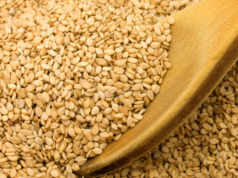 Sesame royalty free stock photography