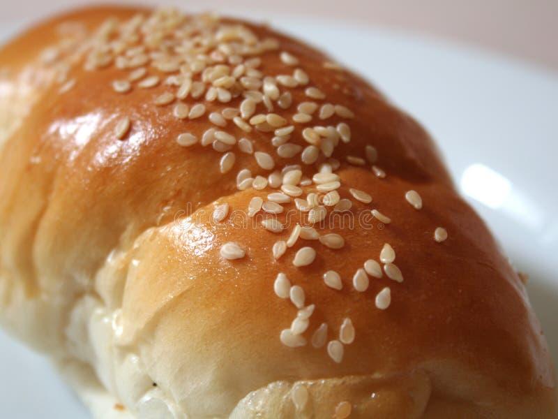 Download Sesame on dinner roll stock photo. Image of sesame, golden - 1107304