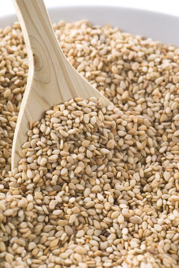 Sesame Seeds stock photos