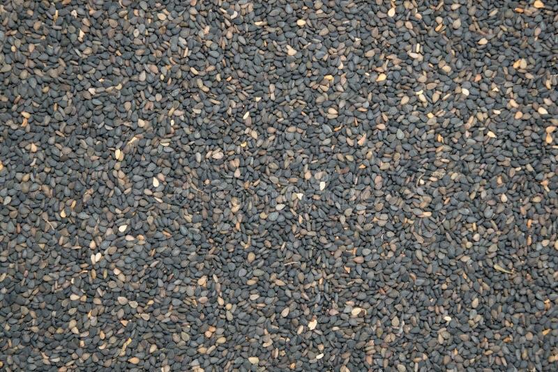 Sesame seeds - Perilla stock photography