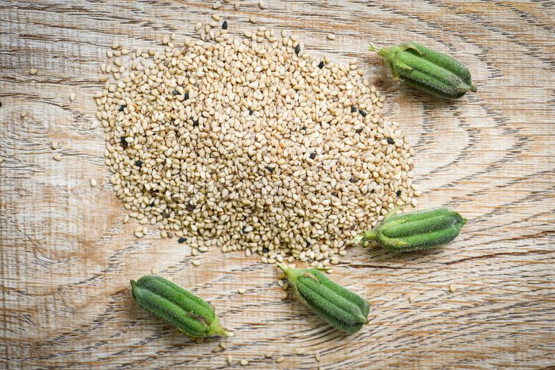 Sesame seeds in a wooden background green sesame pods royalty free stock photography