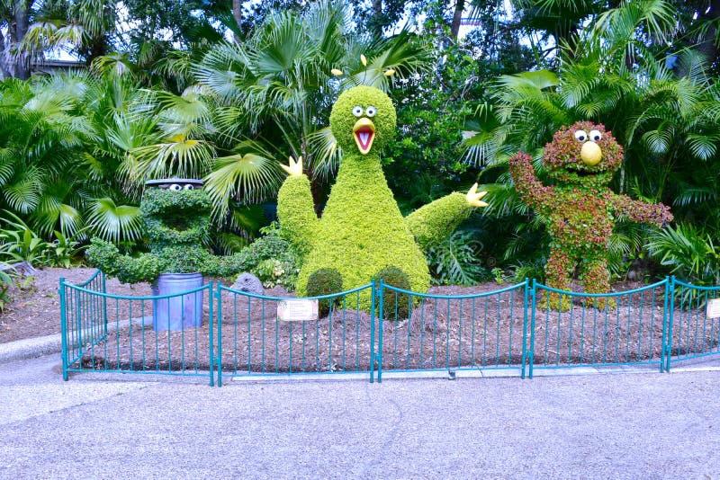 Sesame Street-Charaktere entworfen mit Anlagen an Bush-Gärten Tampa Bay lizenzfreies stockbild