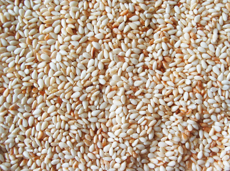 Sesamzaad Stock Foto