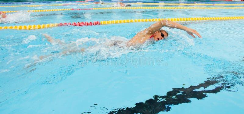 Sessão de formação regional da equipe de natação fotos de stock