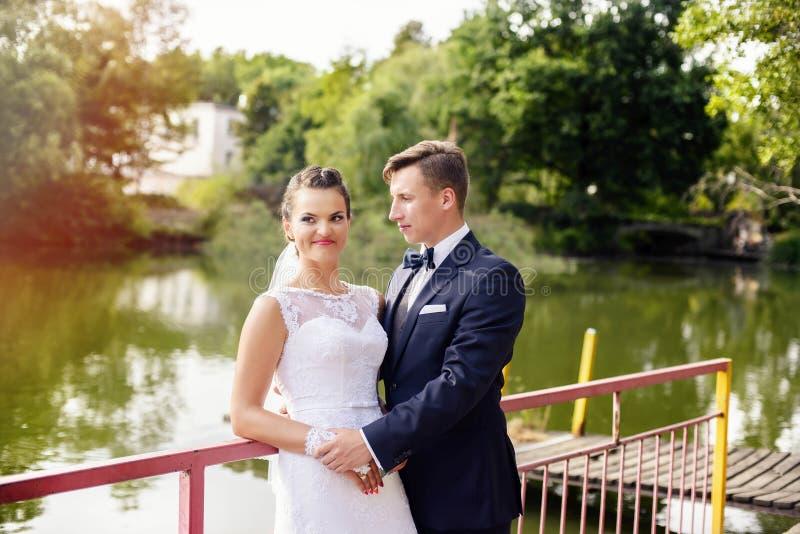 Sessão do casamento no parque fotografia de stock royalty free