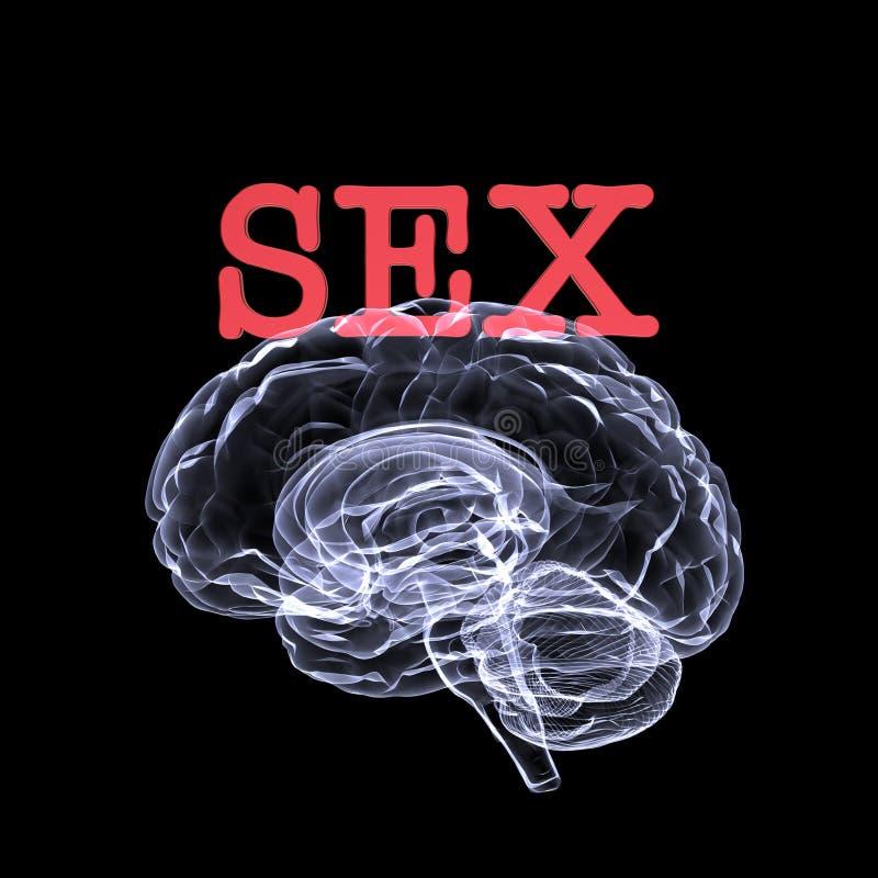Sesso sul cervello royalty illustrazione gratis