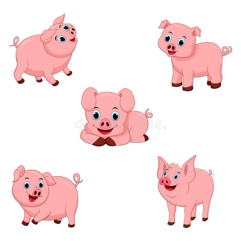 Set śliczne świnie ilustracji