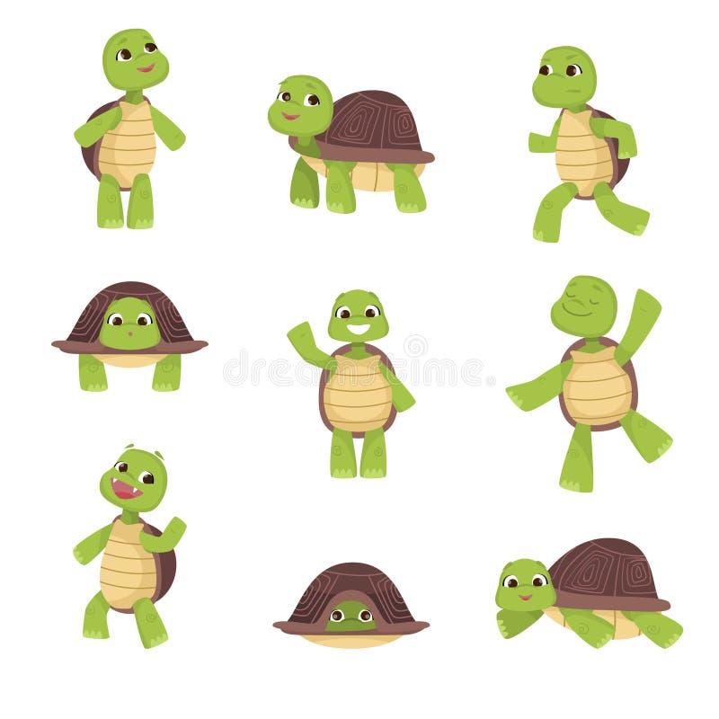 Set śliczni zieleni żółwie z brąz skorupą w różnorodnych pozach odizolowywać na białym tle ilustracja wektor
