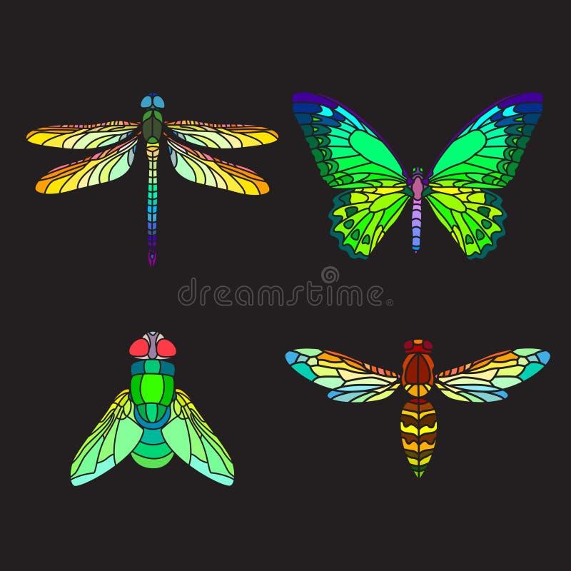Set Ñ  witrażu olorful insekty ilustracji