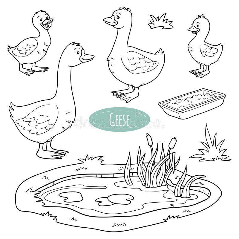 Set śliczni zwierzęta gospodarskie i przedmioty, wektorowa gęsia rodzina royalty ilustracja