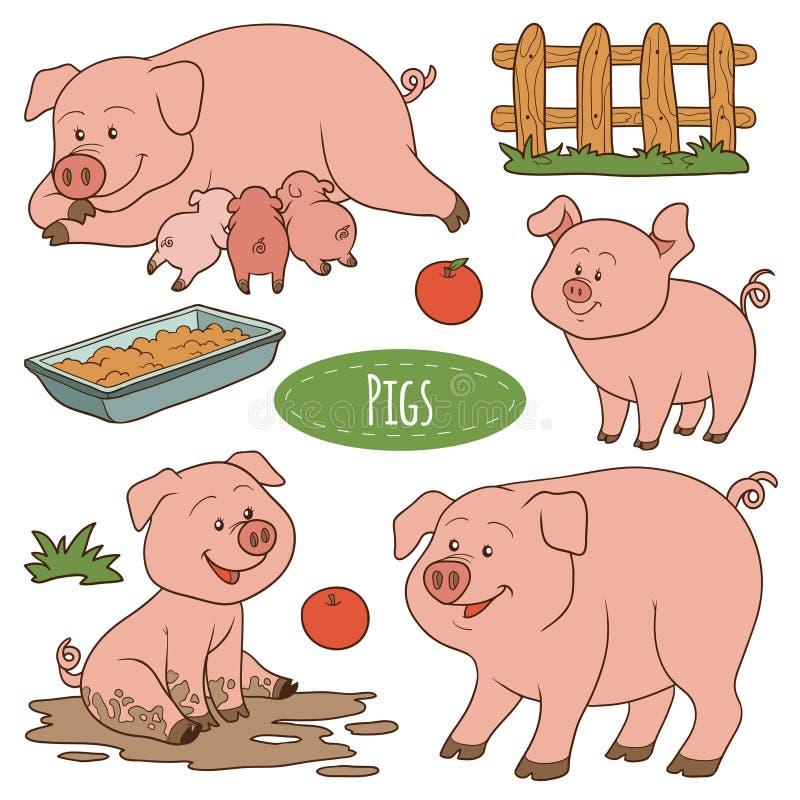 Set śliczni zwierzęta gospodarskie i przedmioty, wektorowe rodzinne świnie ilustracji