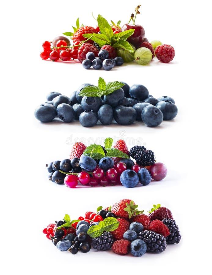 Set świeże jagody odizolowywał biel Rodzynek, malinka, wiśnia, truskawka, agrest, morwa, borówka, czarna jagoda zdjęcia royalty free