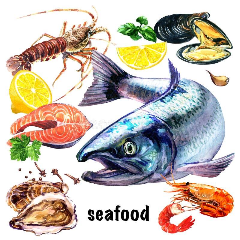 Set świeży owoce morza, atlantyckiego łososia ryba, mussels, łososiowy stek, gotowana krewetka i cytryna, rakowi, ostrygowi, denn ilustracji