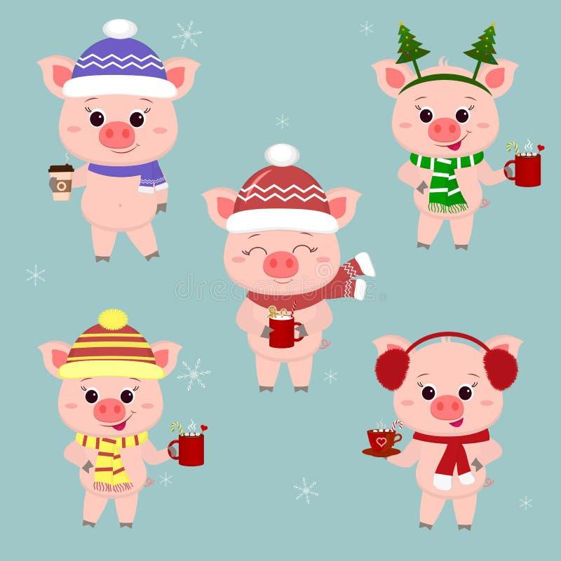 Set świnie w różnych kapeluszach i szaliku z filiżankami różni gorący napoje boże narodzenie nowy rok szczęśliwy wesoło Symbol ilustracji