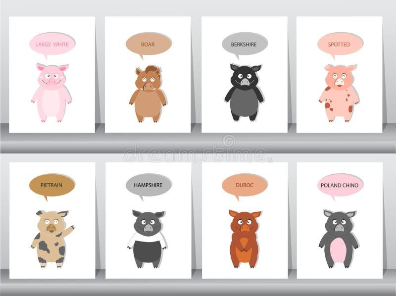 Set świnie, wieprze hoduje, Wektorowa ilustracja ilustracji