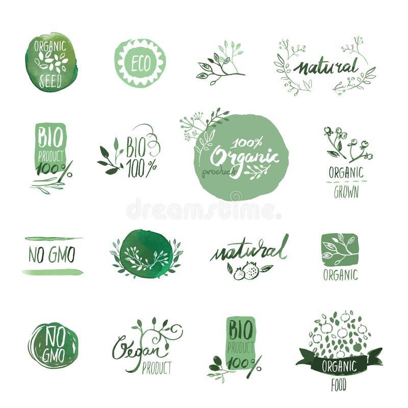 Set żywności organicznej akwareli ręka rysujący elementy i odznaki ilustracji