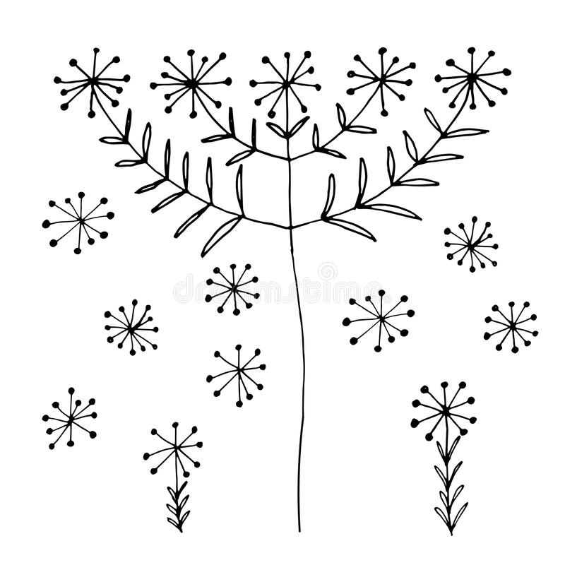 Set of abstract black hand drawn dandelion blowball flowers in doodle style. Vector Illustration EPS10 royalty free illustration