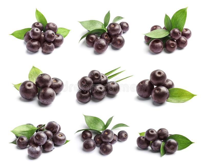 Set with acai berries and green leaves royalty free stock images