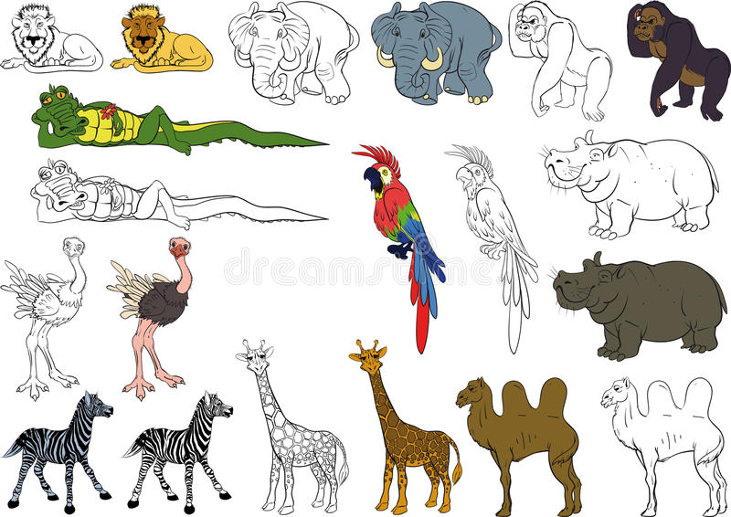Download Set of african animals stock vector. Image of collection - 22800118