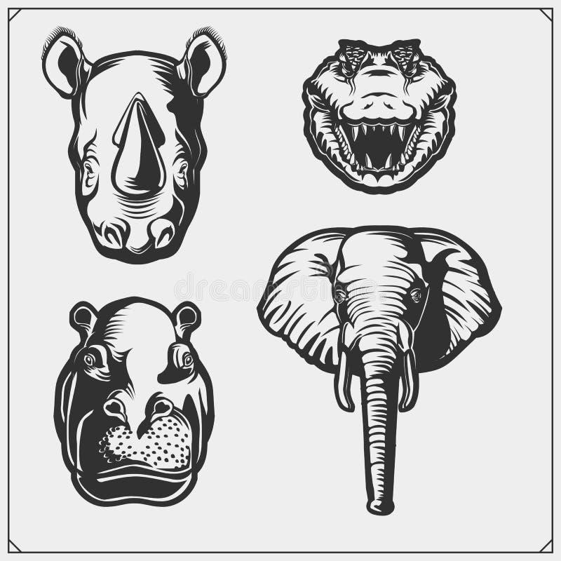 Set of african and jungle animals. Crocodile, hippo, elephant and rhino. stock illustration