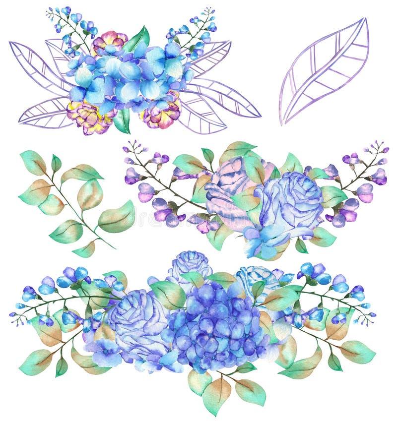 Set akwarela bukiety z błękitną hortensją kwitnie ilustracji