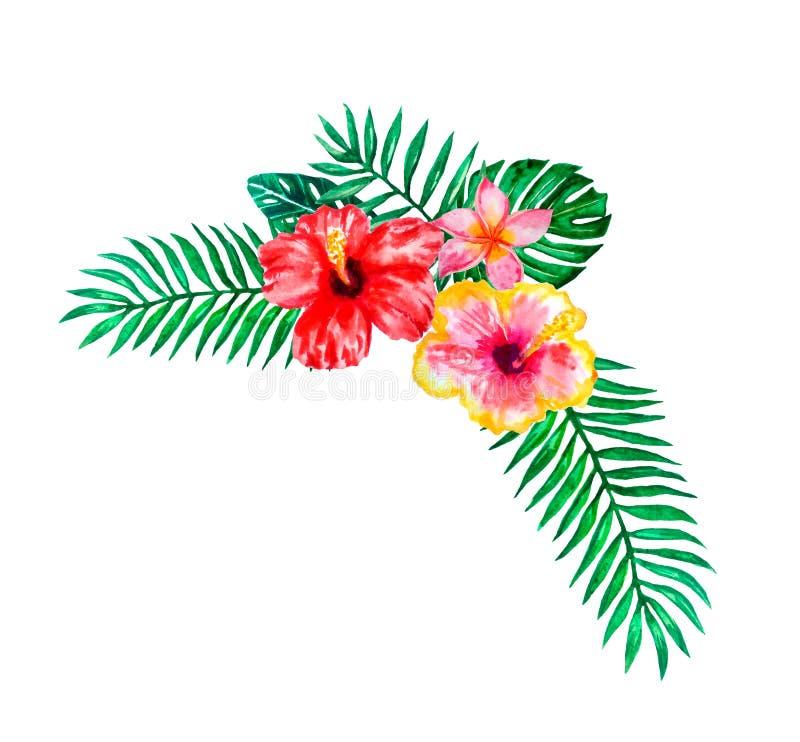 Set akwareli r?ka malowa? tropikalnych kwiaty, li?cie i ro?liny, Jaskrawej dżungli egzotyczny bouqoet doskonalić dla lato ślubu ilustracja wektor
