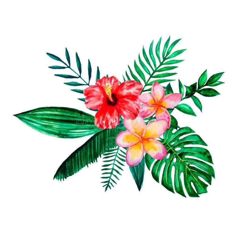 Set akwareli r?ka malowa? tropikalnych kwiaty, li?cie i ro?liny, Jaskrawej dżungli egzotyczny bouqoet doskonalić dla lato ślubu royalty ilustracja